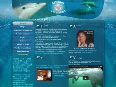 Nagez avec les baleines et les dauphins avec athonor formation