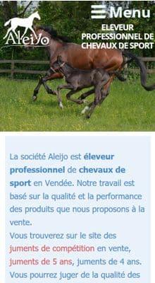 Création d'un site internet responsive éléveur de chevaux