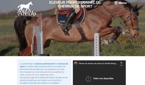 création site internet élevage de chevaux